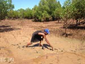 A local villager working for Eden Reforestation Projects plants a tree in Madagascar's Mangroves forests. As of February 2021, See Change Now has planted 141 trees in Madagascar.